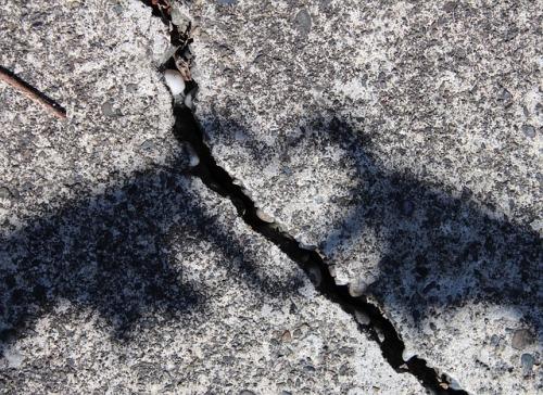 shadow heart.