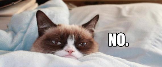 grumpy no.