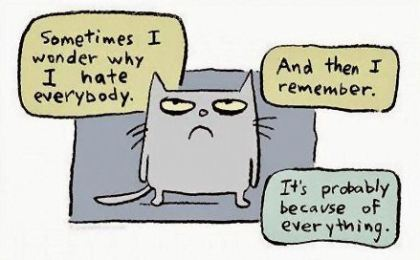cynical cat.