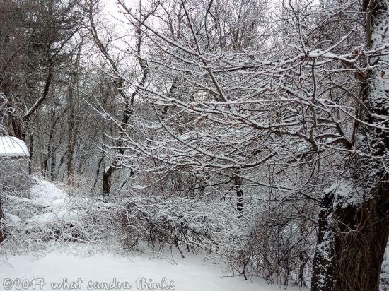sig-rs-0216-snow-12