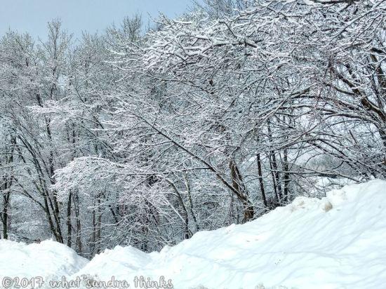sig-rs-0216-snow-2