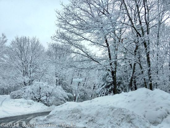 sig-rs-0216-snow-4