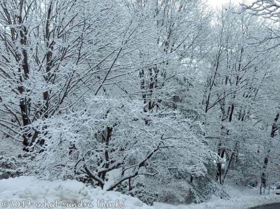 sig-rs-0216-snow-6