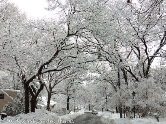 sig-rs-0216-snow-8